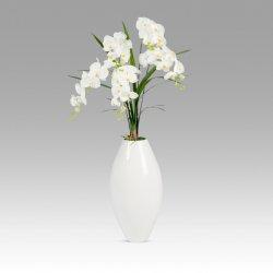 Storczyk wazon Genewa-2