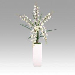 Storczyk wazon Milea